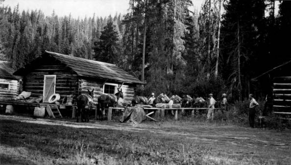 Powell Ranger Station, Loading Pack String<br />Powell Ranger Station, Loading Pack String, Photographer Unknown, 1936