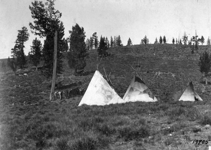 Indian camp at Nez Perce Pass<br />Indian camp at Nez Perce Pass , Leiberg, J. B., 1901