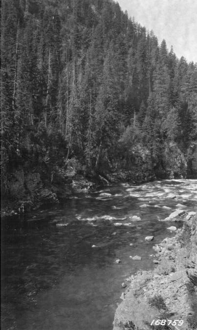 Selway River Scene, Selway National Forest<br />Selway River Scene, Selway National Forest, Flint, Howard, 1922