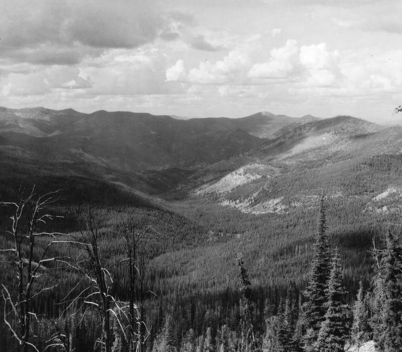View into Flat Creek from the North Side of Salmon Mountain<br />View into Flat Creek from the North Side of Salmon Mountain, Swan, K. D., 1938