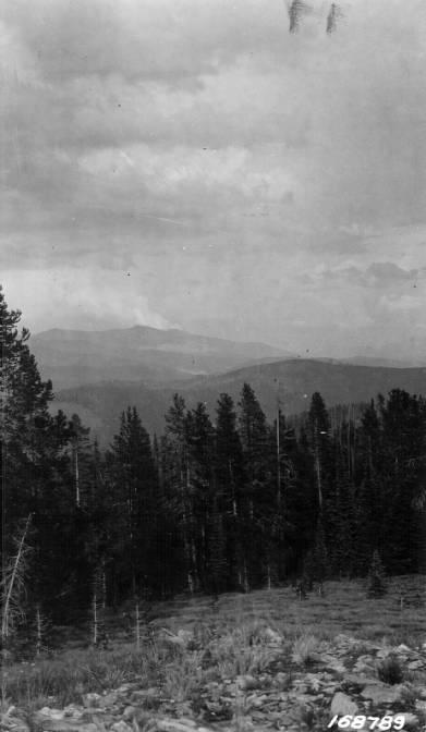 View Across Big Creek, Bitterroot National Forest<br />View Across Big Creek, Bitterroot National Forest, Shoemaker, Theodore, 1924