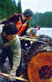 Lumberjacks -- Kenny Pearson, Robert Tondevold Jr. and Jerry Knivila -- moving log with peaveys.