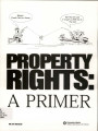 Property rights: a primer