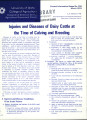 Injuries and diseases of dairy cattle at the time of calving and breeding