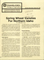 Spring wheat varieties for northern Idaho