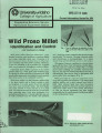 Wild proso millet: identification and control