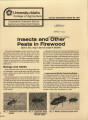 Insects and other pests in firewood