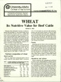 Wheat: it's nutritive value for cattle