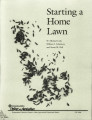 Starting a home lawn
