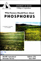 What Farmers Should Know About Phosphorus