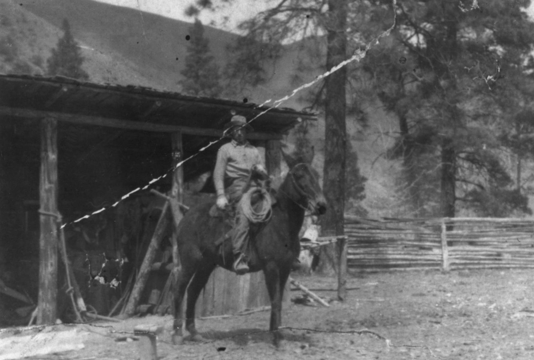 item thumbnail for Mike 'The Mule Man' Hogan in front of his shop on Little Creek