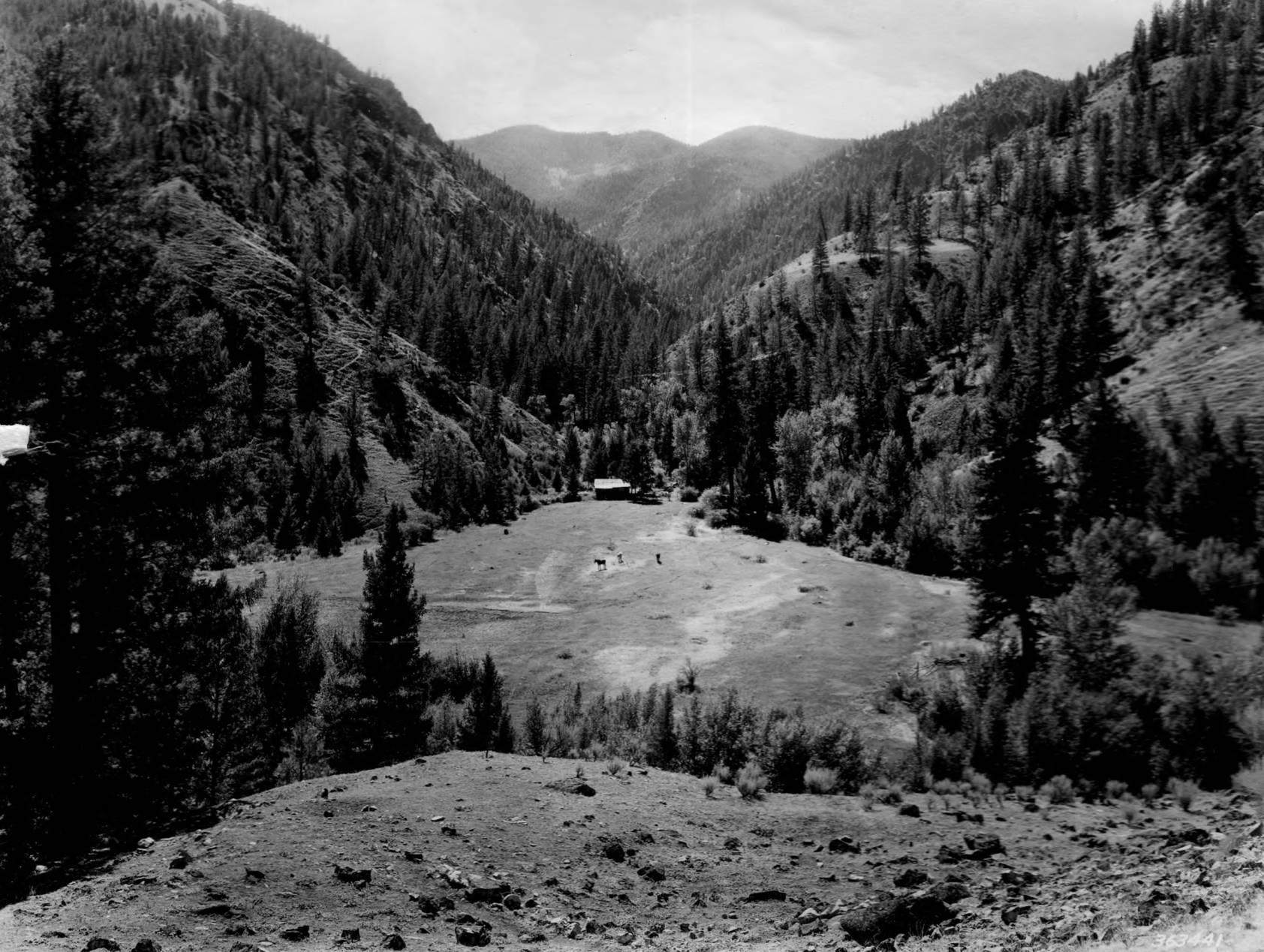 item thumbnail for Dave Lewis Ranch, Big Creek 2