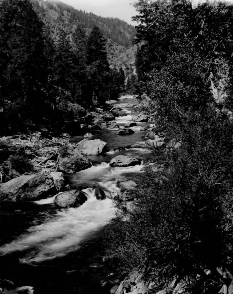 item thumbnail for Lower Big Creek near Beall Ranch