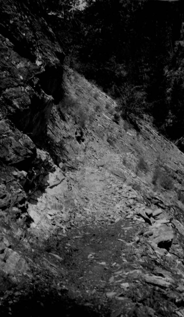 item thumbnail for Pack train on trail from Dry Creek