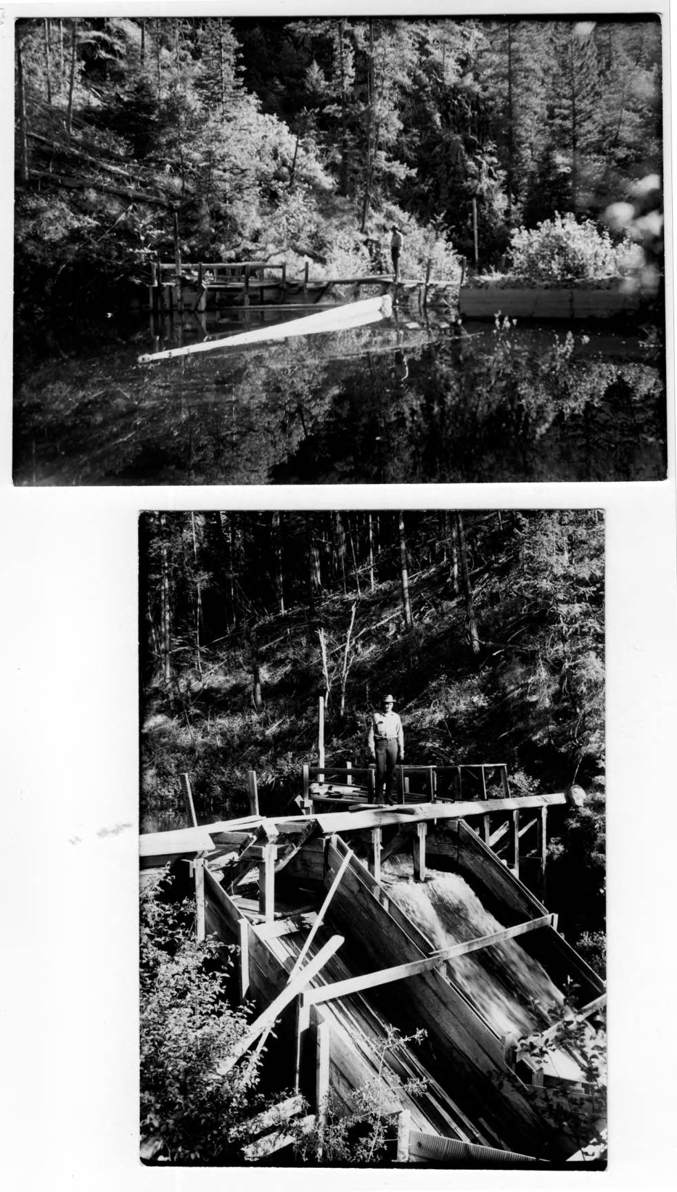 item thumbnail for Snowshoe Mine on Crooked Creek, ranger stands on chute