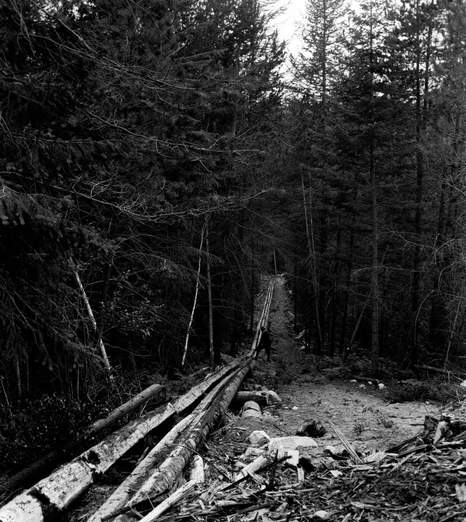 item thumbnail for Log slide to river, Kaniksu National Forest