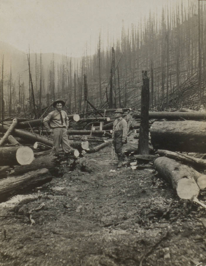 item thumbnail for Men clearing trail after burn