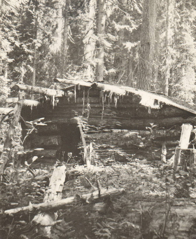item thumbnail for First cabin on McGuire homestead, possible false homestead claim, Marble Creek