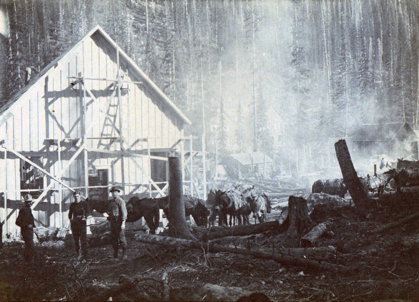 item thumbnail for Saw mill and millworkers on Lake Creek, Buffalo Hump