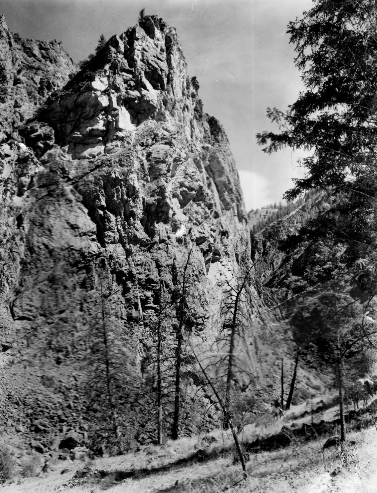 item thumbnail for Rock face on Middle Fork of Salmon above Camas Creek