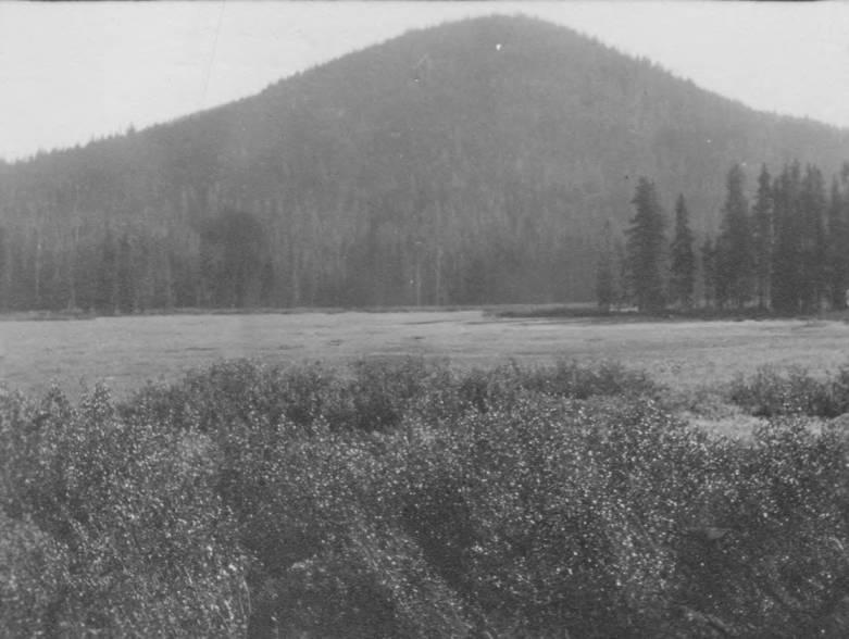 item thumbnail for Packers' Meadows, Idaho (postcard)