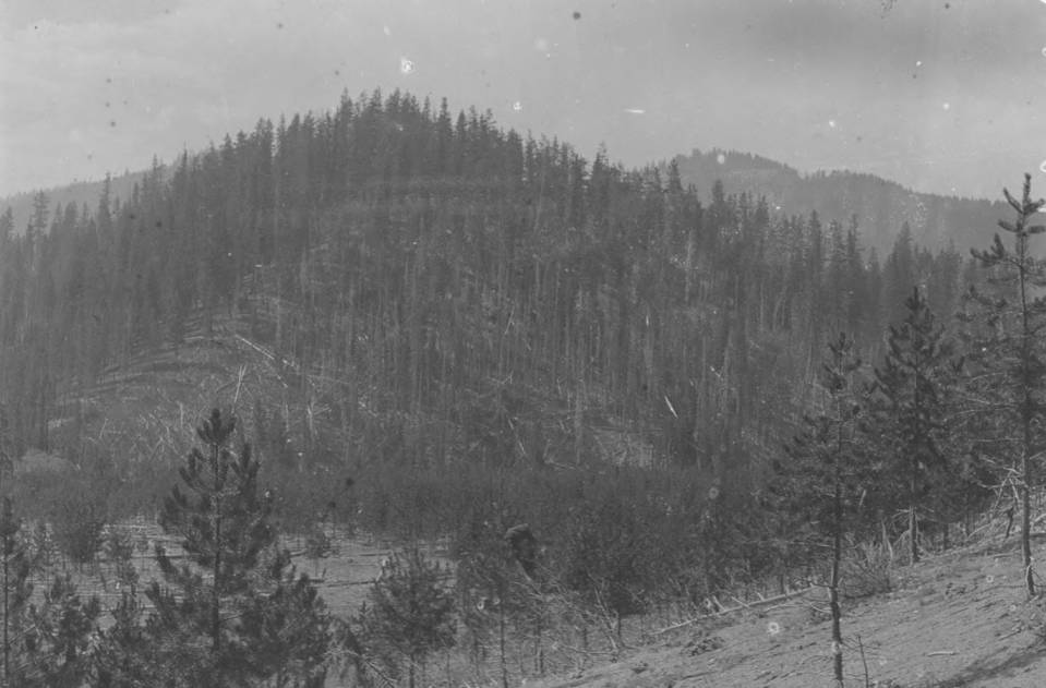 item thumbnail for Clear Creek Canyon, Boise County