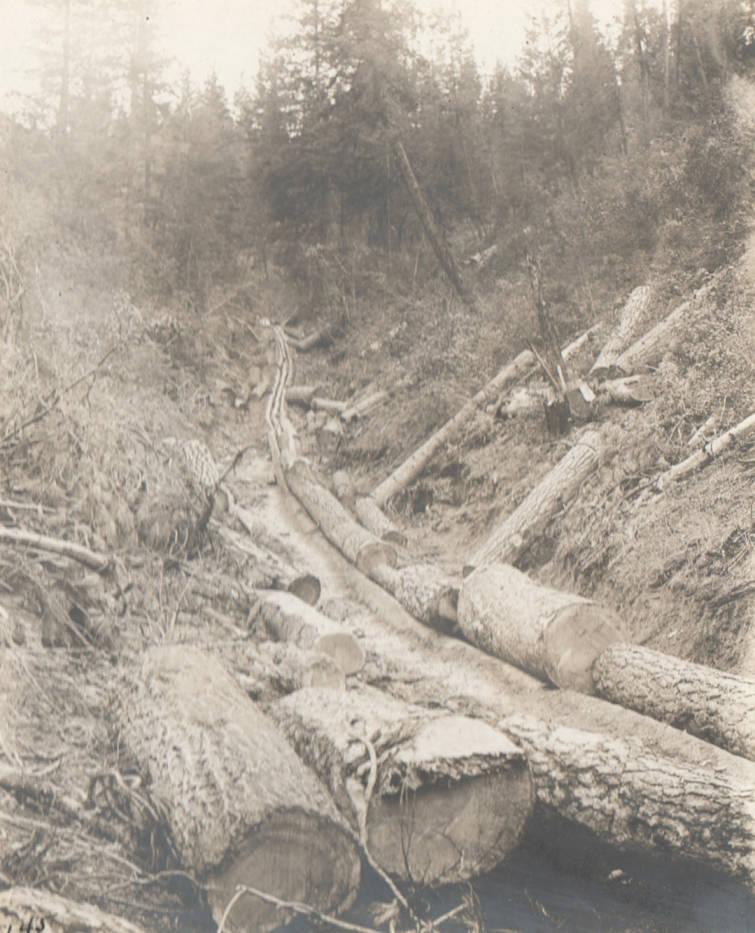item thumbnail for Log chute at head of Garden Gulch