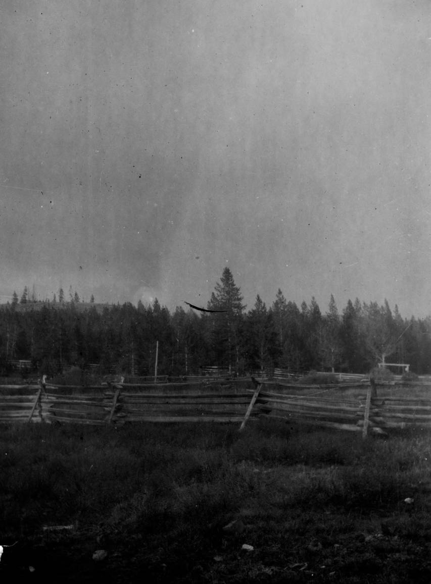 item thumbnail for Pole fences at Chamberlin Ranger Station