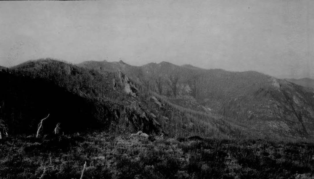 item thumbnail for Head of the Crooked Fork, Lolo (Clearwater) National Forest