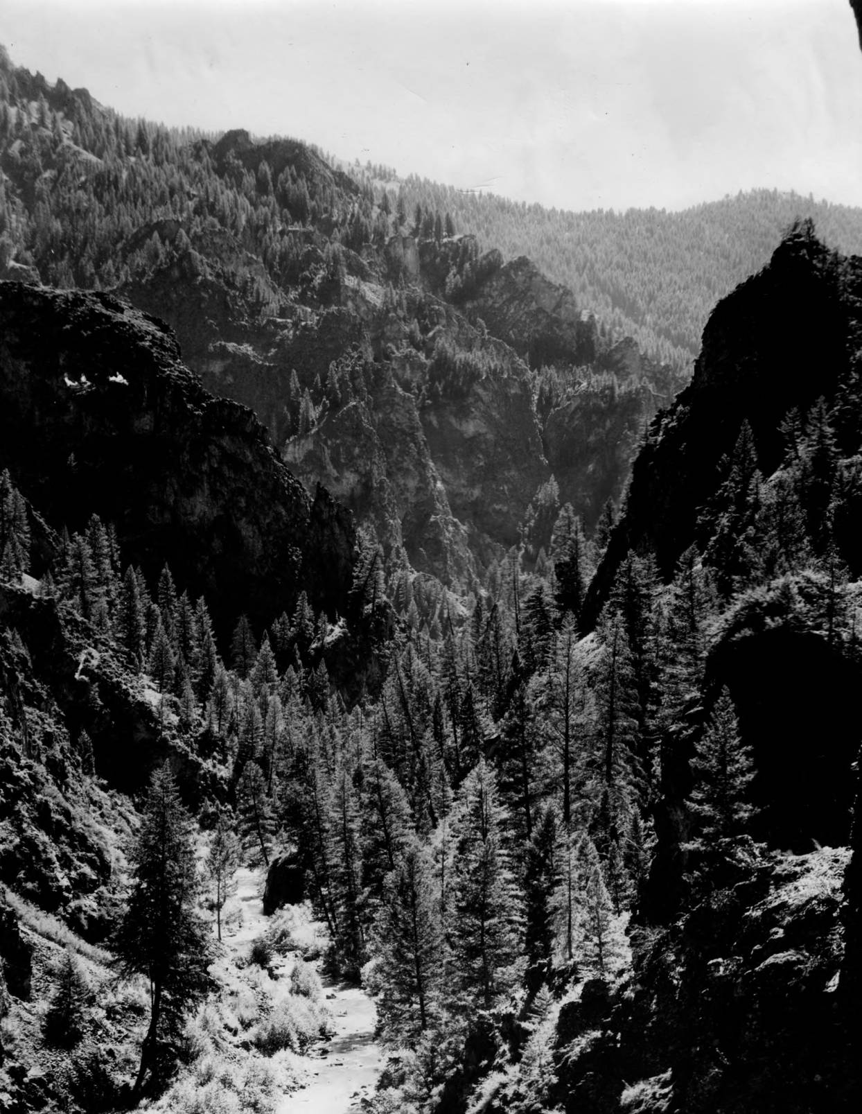 item thumbnail for Marble Creek in Payette National Forest, canyon