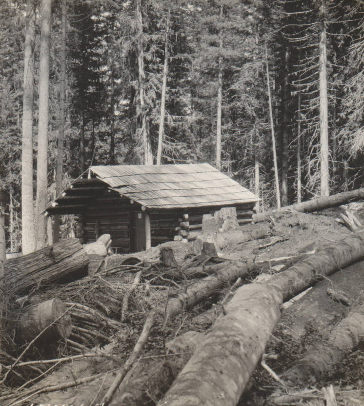 item thumbnail for Kildee log cabin and 'clearing', possible false homestead, Marble Creek