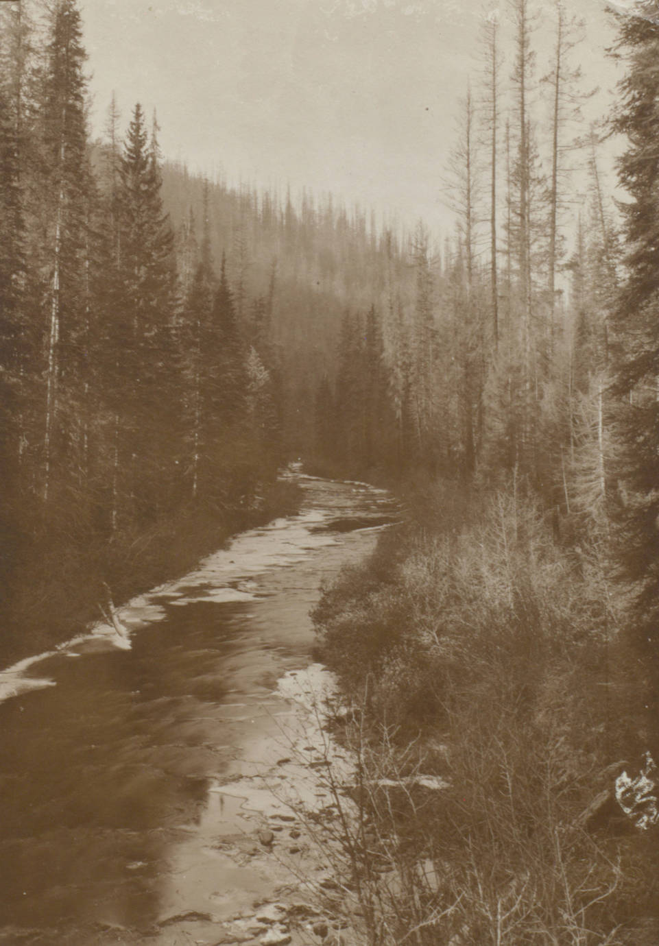 item thumbnail for The North Fork of the Coeur d'Alene River