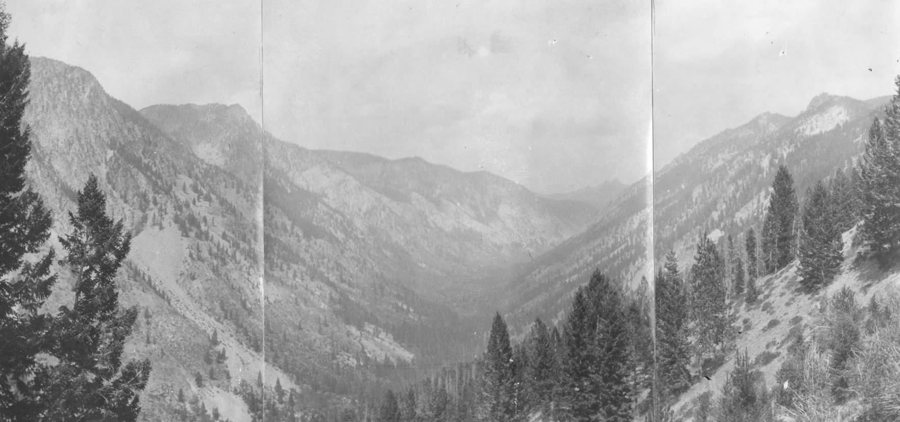 item thumbnail for Wilson Creek Basin, Yellowjacket Range