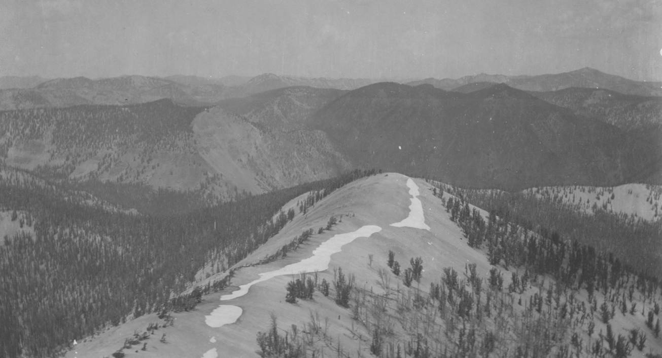 item thumbnail for Summit of divide between Big Creek and East Fork of South Fork of Salmon River