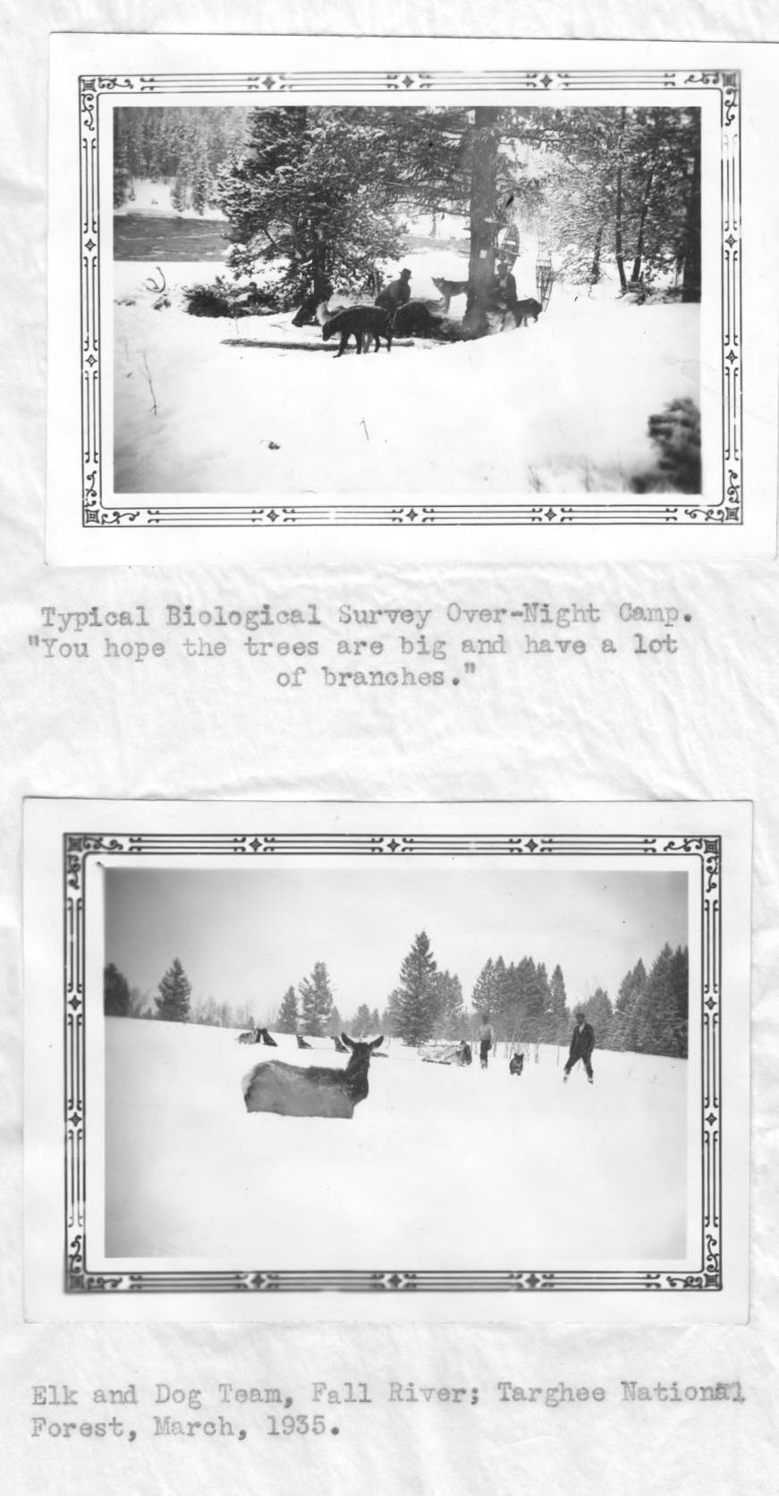 item thumbnail for Biological survey over-night camp in snow