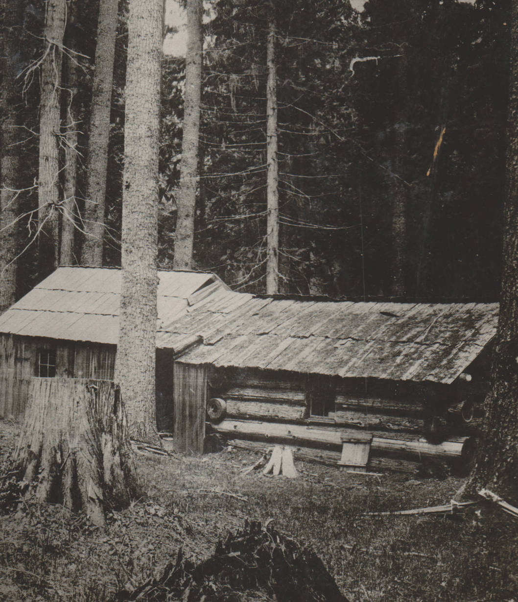 item thumbnail for Marble Creek homestead and cabin, possible false homestead claim