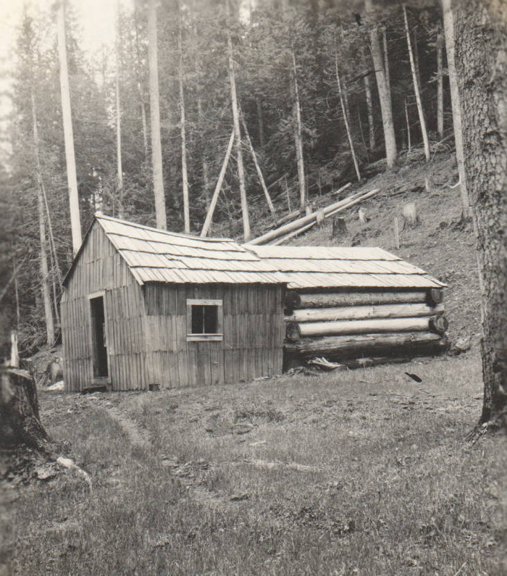 item thumbnail for Stoddard homestead and cabin, possible false homestead claim, Marble Creek