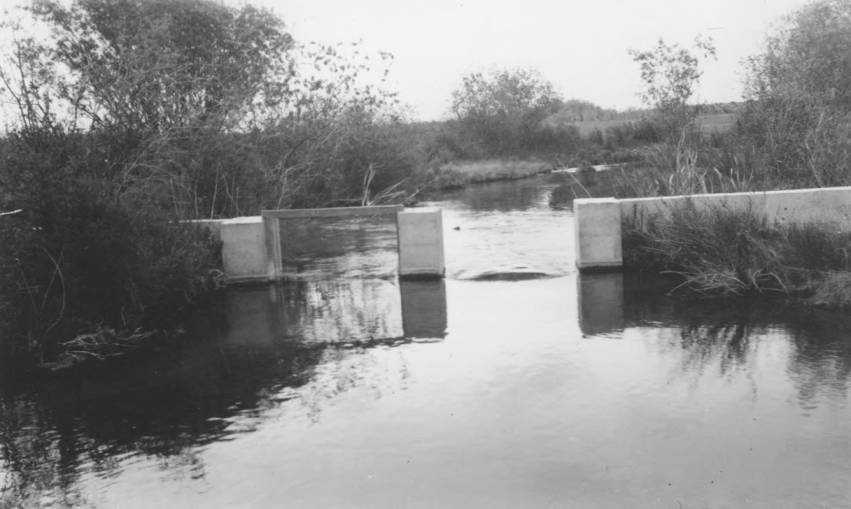 item thumbnail for Fish rearing pond