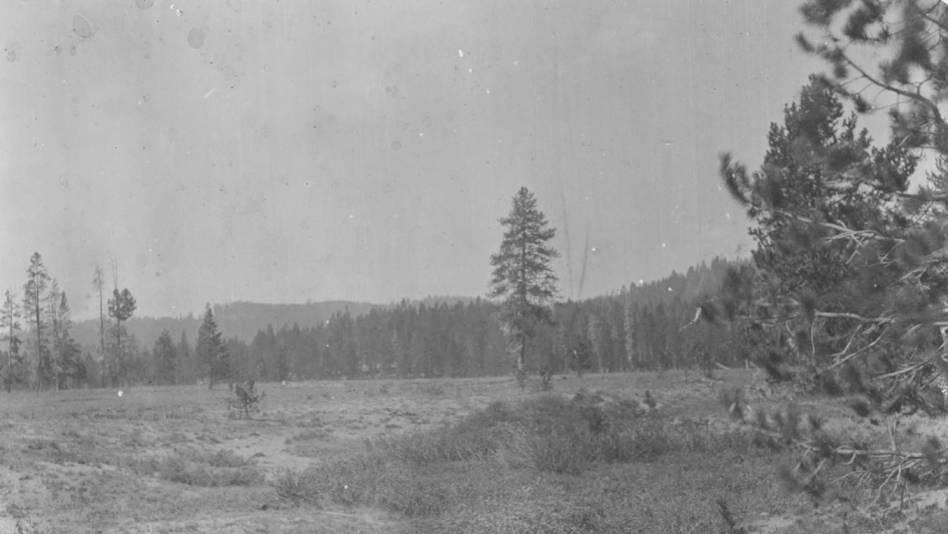 item thumbnail for Along Elk Creek in Bear Valley, Idaho County