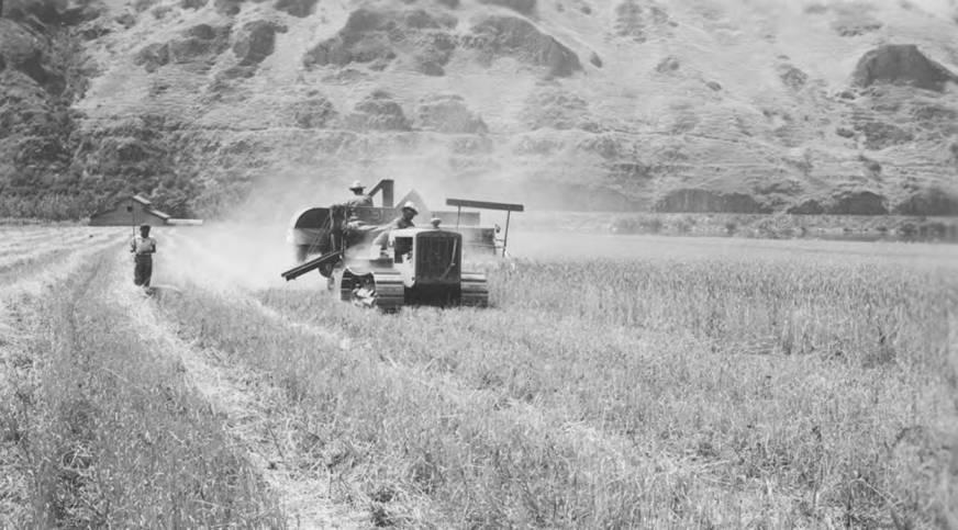 item thumbnail for Harvester in fields