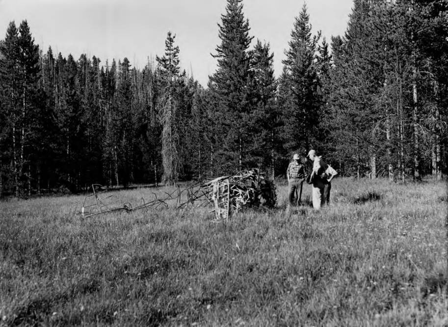 item thumbnail for Men stand near remains of wreck and fatal plane crash at Cold Meadows