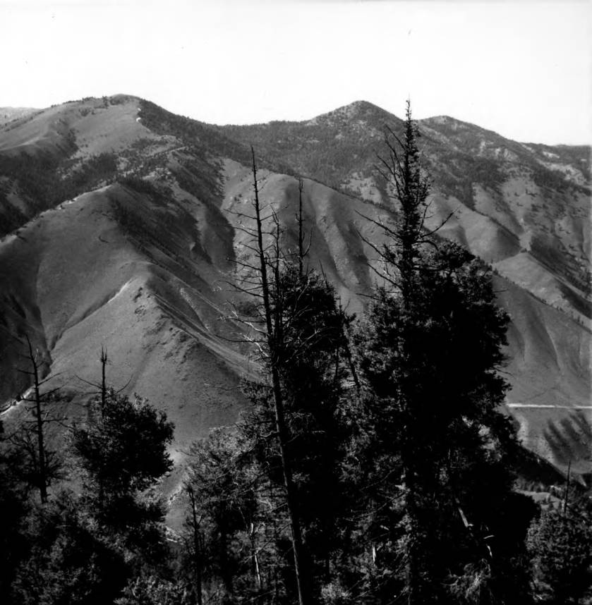 item thumbnail for Mahoney Mountain area