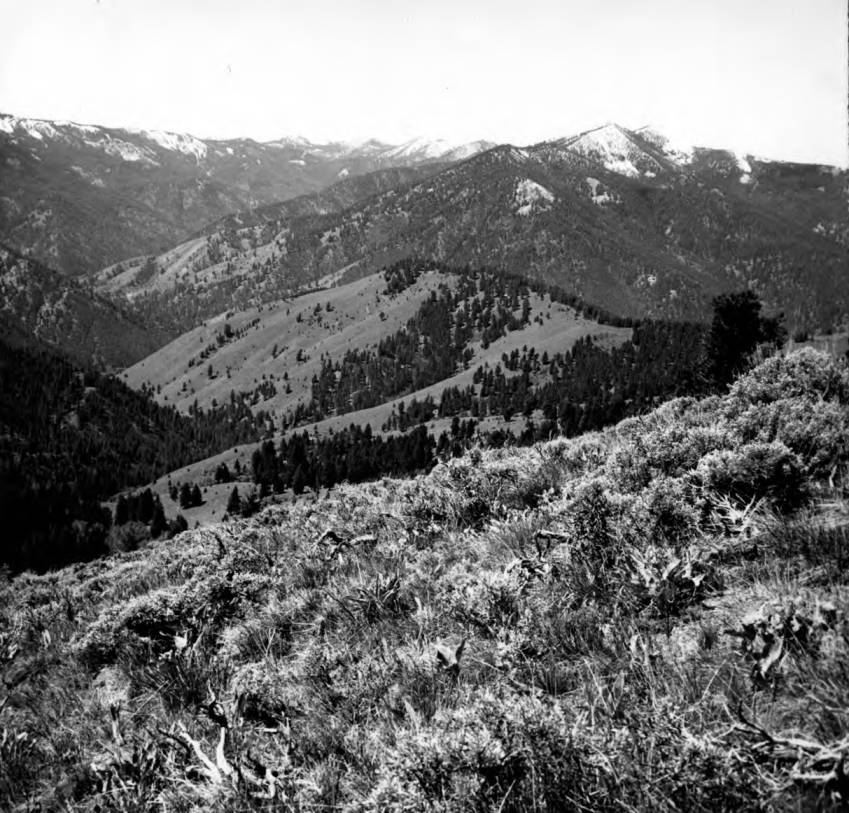 item thumbnail for Terrain looking west from ridge saddle near Little Loon Creek