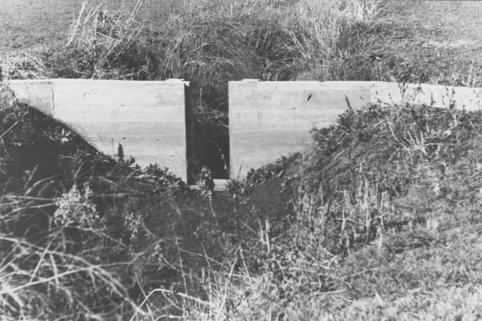 item thumbnail for Dam in irrigation ditch, Lapwai