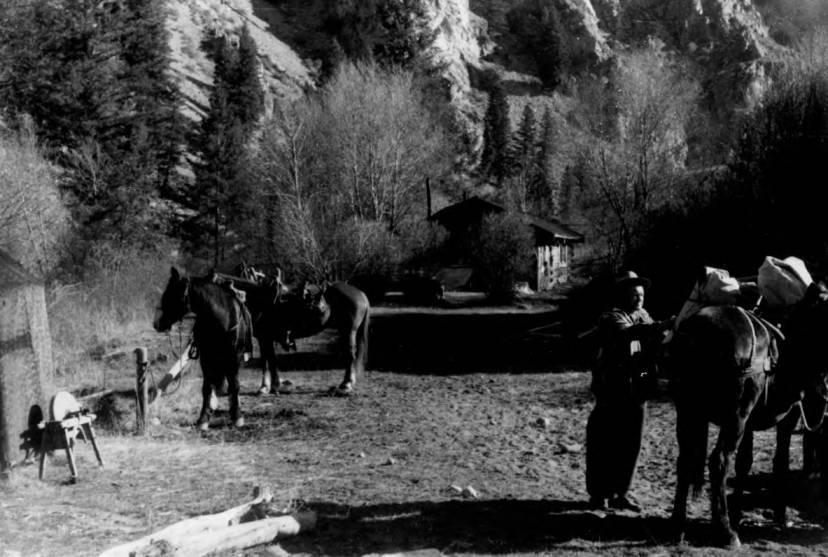 item thumbnail for Game Warden, Lavar Jacklin, at tappan Ranch