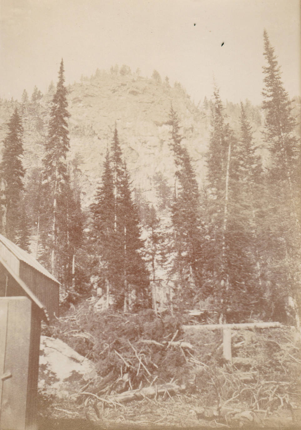 item thumbnail for Cabin and slash, Lake Creek near Calendar, Buffalo Hump
