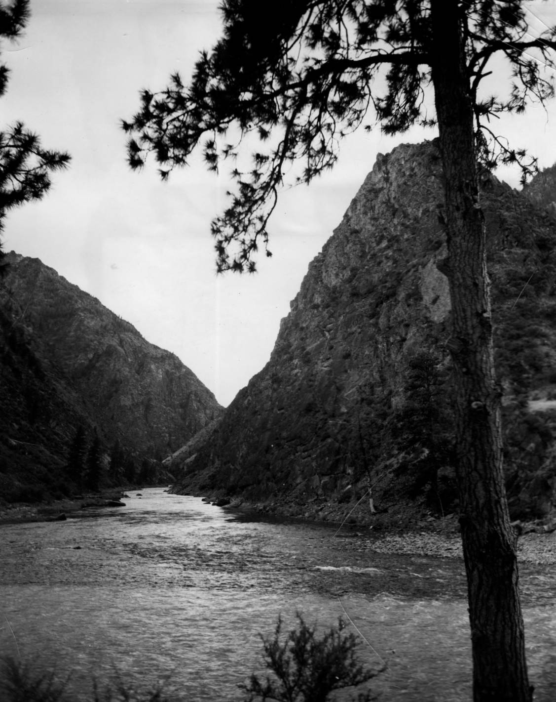 item thumbnail for Junction of Middle Fork and main Salmon Rivers