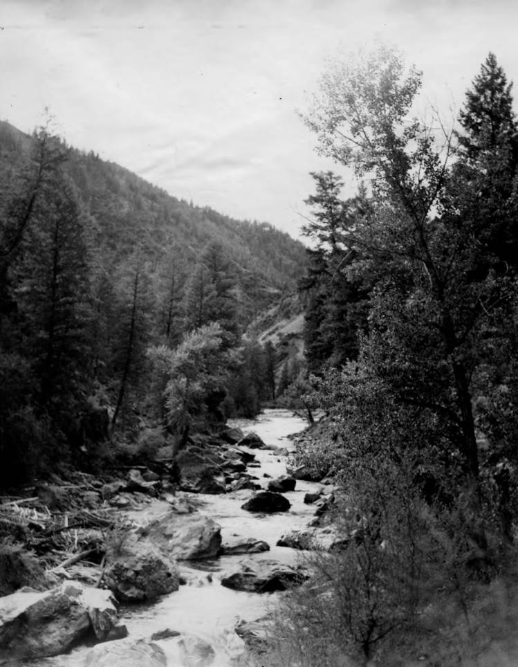 item thumbnail for Marble Creek in Payette National Forest, rapids