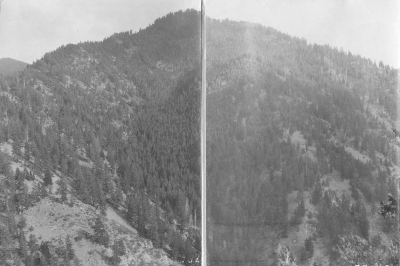 item thumbnail for Near Bobtail Creek Basin