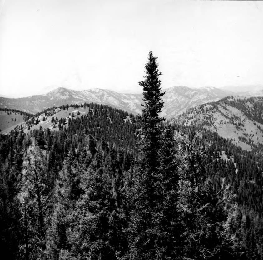 item thumbnail for Ridge route above Cougar Creek